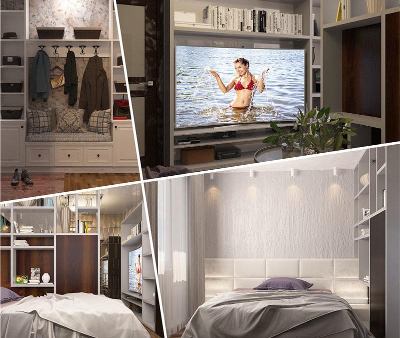 Гостиная-спальня, прихожая. Москва